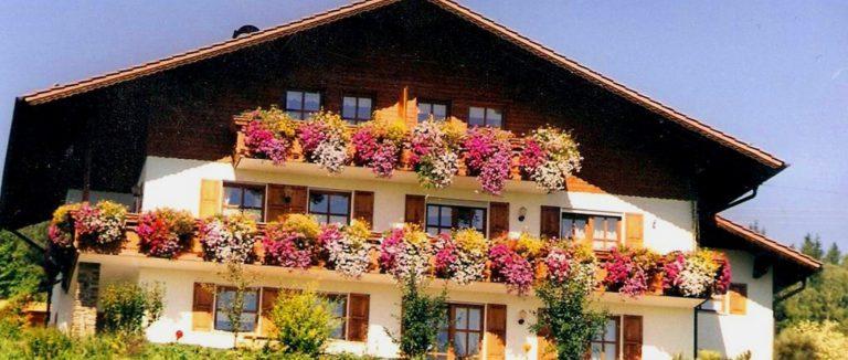 amberger-kriegerhof-nichtraucher-ferienwohnungen-bayerischer-wald-hausansicht-
