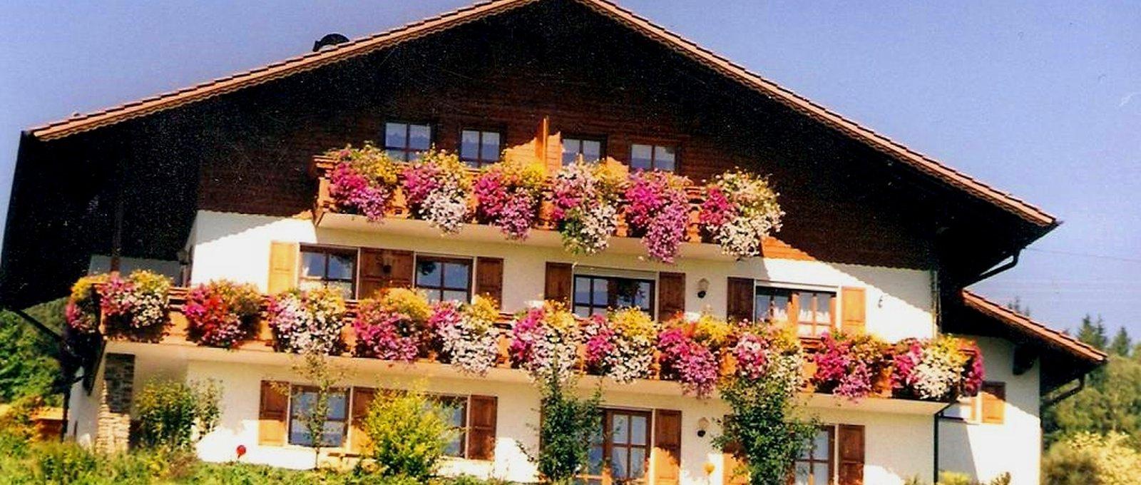 Bauernhof Kriegerhof in Arrach – Kontakt