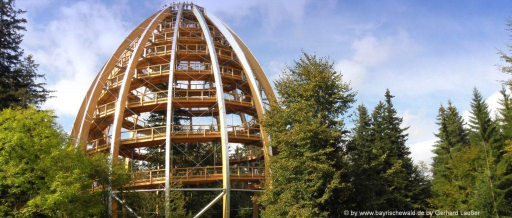 Ausflugsziel Waldwipfelpfad - Unterkünfte in Freyung Grafenau