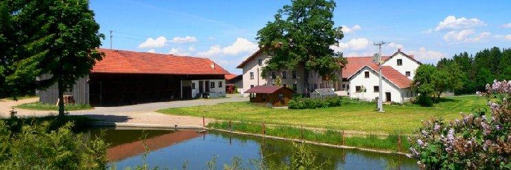 Bauernhofferien im Bayerischen Wald am Bauernhof Guthof der Familie Piendl