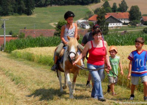 Reiterurlaub im Bayerischen Wald