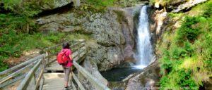 bayerischer-wald-sehenswürdigkeiten-wasserfall-highlights-wanderurlaub