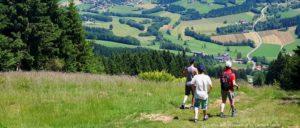 bayerischer-wald-wanderurlaub-bayern-bergwandern-aussichtspunkte