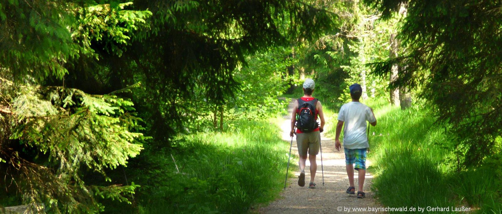 bayerischer-wald-wanderurlaub-niederbayern-wanderwege-oberpfalz