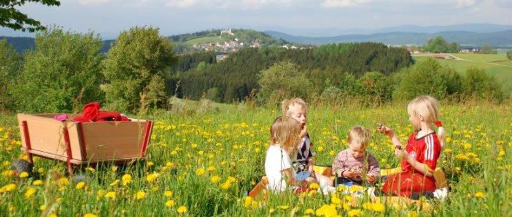 Bauernhof Bayerwaldblick Spielwiese Kinder Aussicht