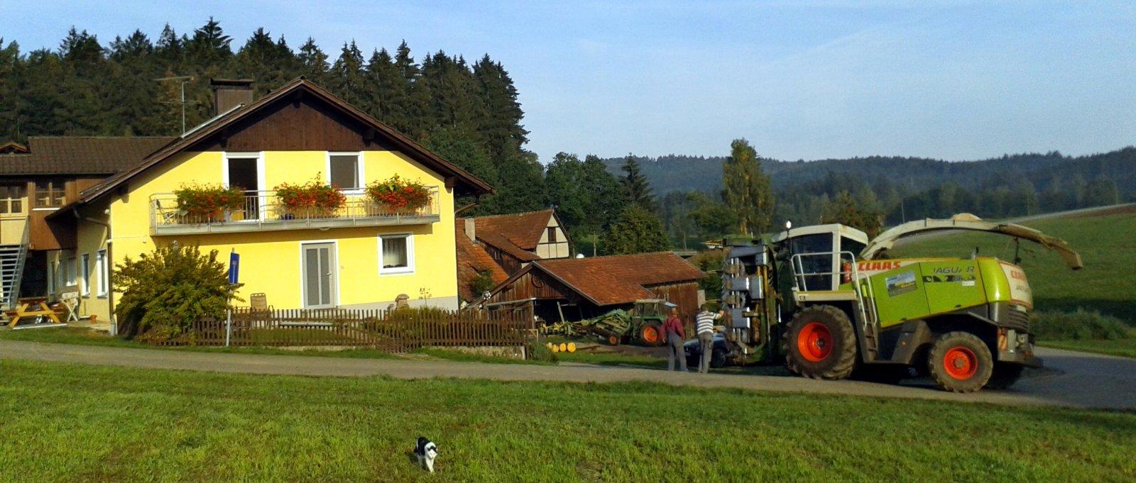 Bauernhof Fingermühl in Michelsneukirchen – Kontakt
