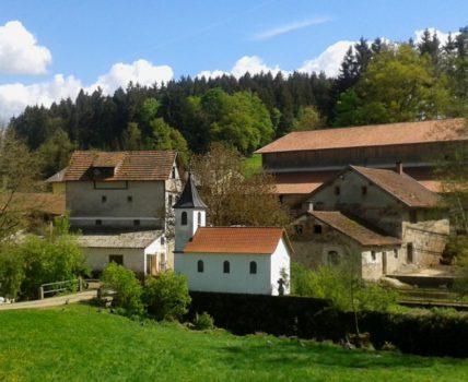 Bauernhof Fingermühl der Kinder + Familienbauernhof