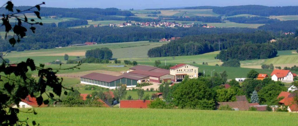 fuchsenhof-neunburg-vorm-wald-reitschule-schwandorf-reiterhof-1400