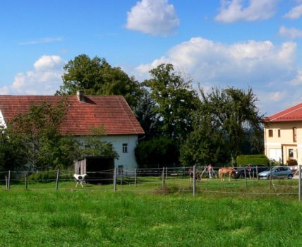 Bauernhof Handlhof in Walderbach – Kontakt