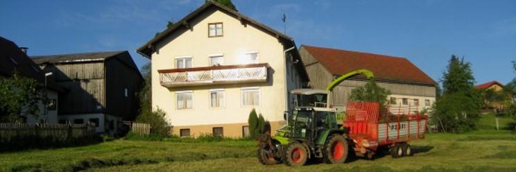 Kinder Familien Bauernhof im Bayerischen Wald Hafansicht