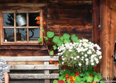 Bayerischer Wald Ferienhütte