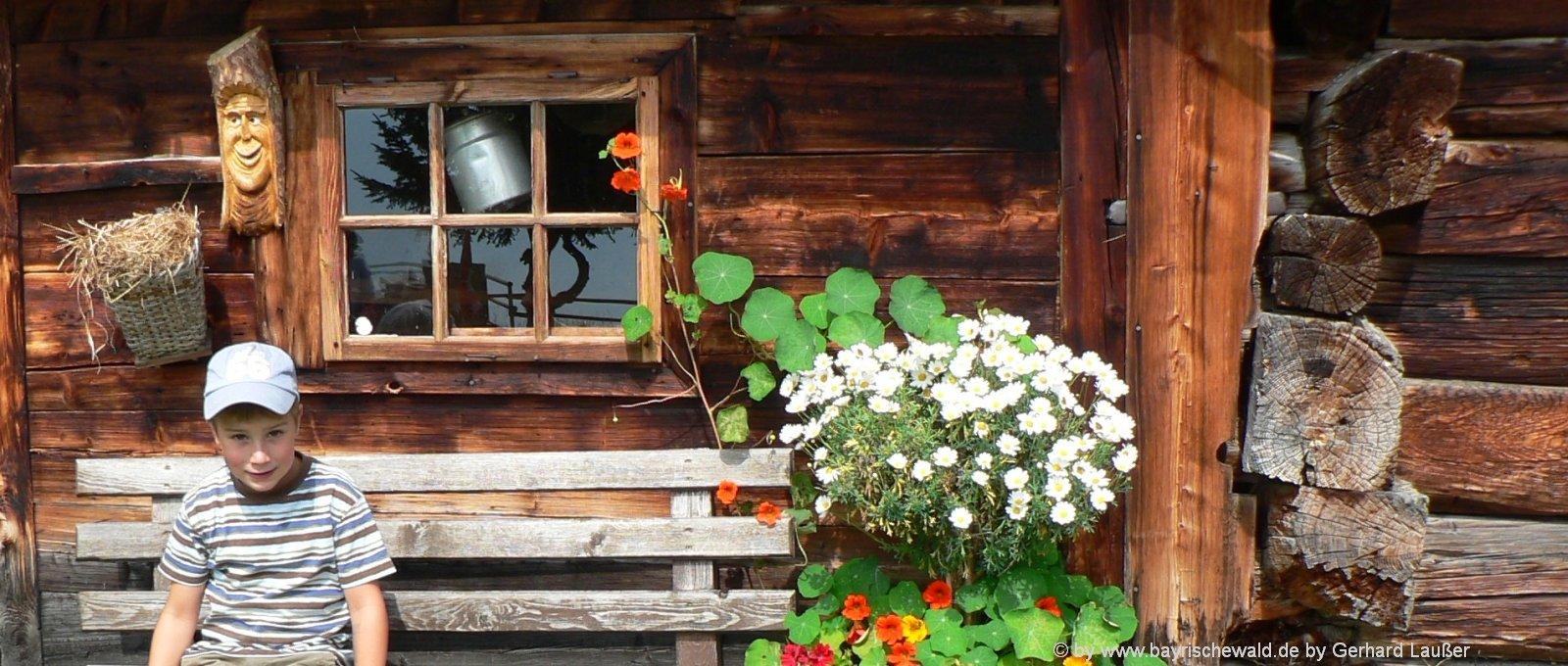 hüttenurlaub-bayerischer-wald-almhuette-berghütten-blockhaus