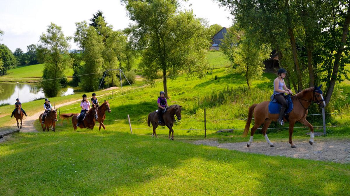 Bayern reiterhof Reiterferien, Reiturlaub