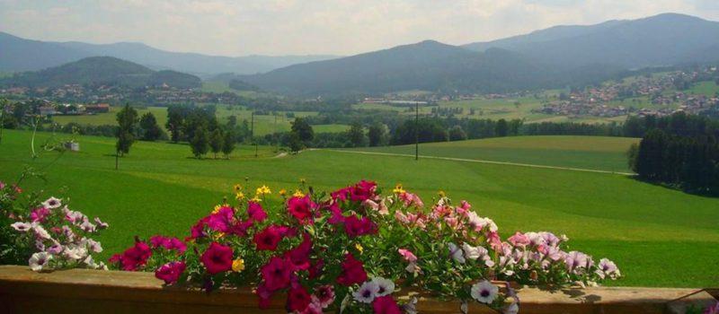 kriegerhof-bauernhof-bayerischer-wald-aussicht-arrach-lam-1200
