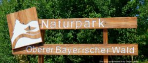 naturpark-oberer-bayerischer-wald-urlaub-wandern-erlebnis