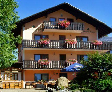 Neuhof 3 Sterne Landhotel im südlichen Bayerwald