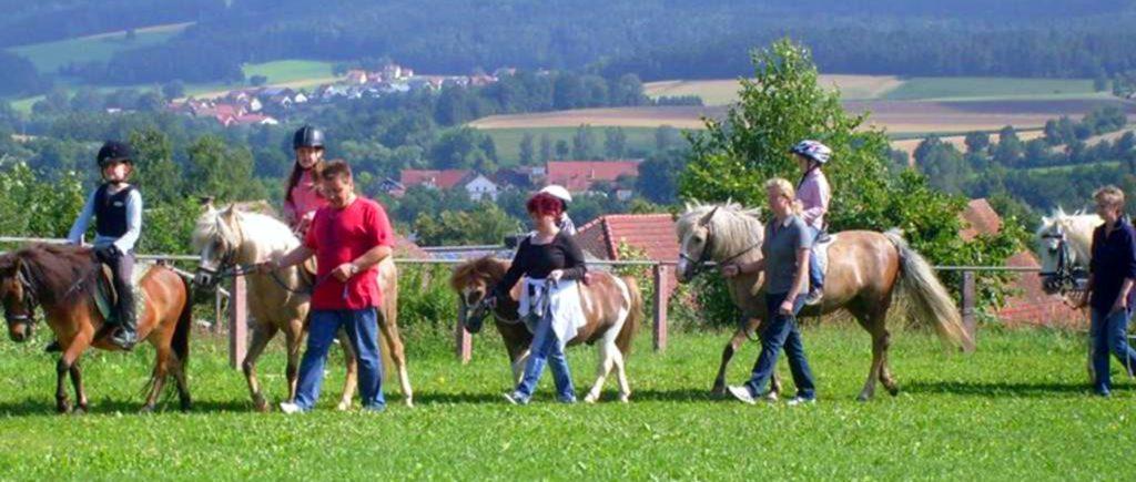 nissl-kinder-ferien-ponyhof-bayern-ponyreiten-oberpfalz-1400
