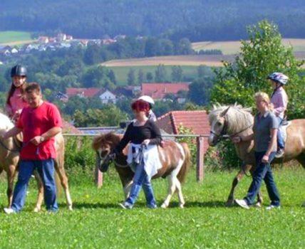 Bauernhof Mühlfriedlhof in Neunburg vorm Wald – Kontakt