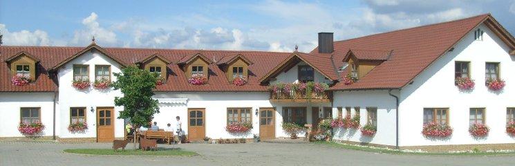 Kinderreiterferien am Ponyhof in Deutschland