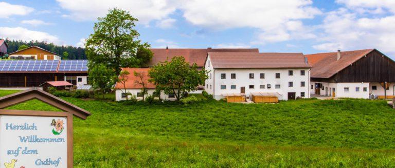 piendl-guthof-bayerischer-wald-bauernhofferien-bayern-ansicht