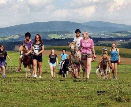 Pony Ferienhof Eder Familien Reiterferien bei Deggendorf