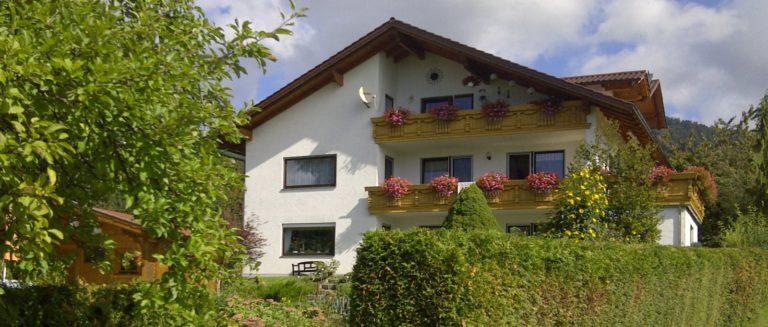 schamberger-ferienwohnung-streicheltiere-unterkunft-hoher-bogen-berg-ansicht