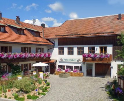 Familienurlaub am Reiterhof Schanzer im Dreiländereck