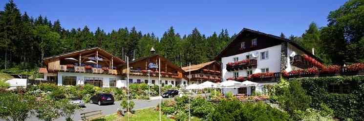 Bayerischer Wald Wellness & Sporthotel in Süddeutschland Ansicht