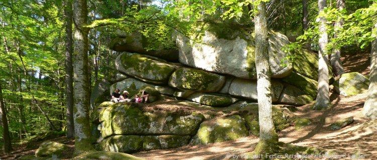 wanderwege-oberpfalz-wanderungen-im-hoellbachtal-regensburg-cham