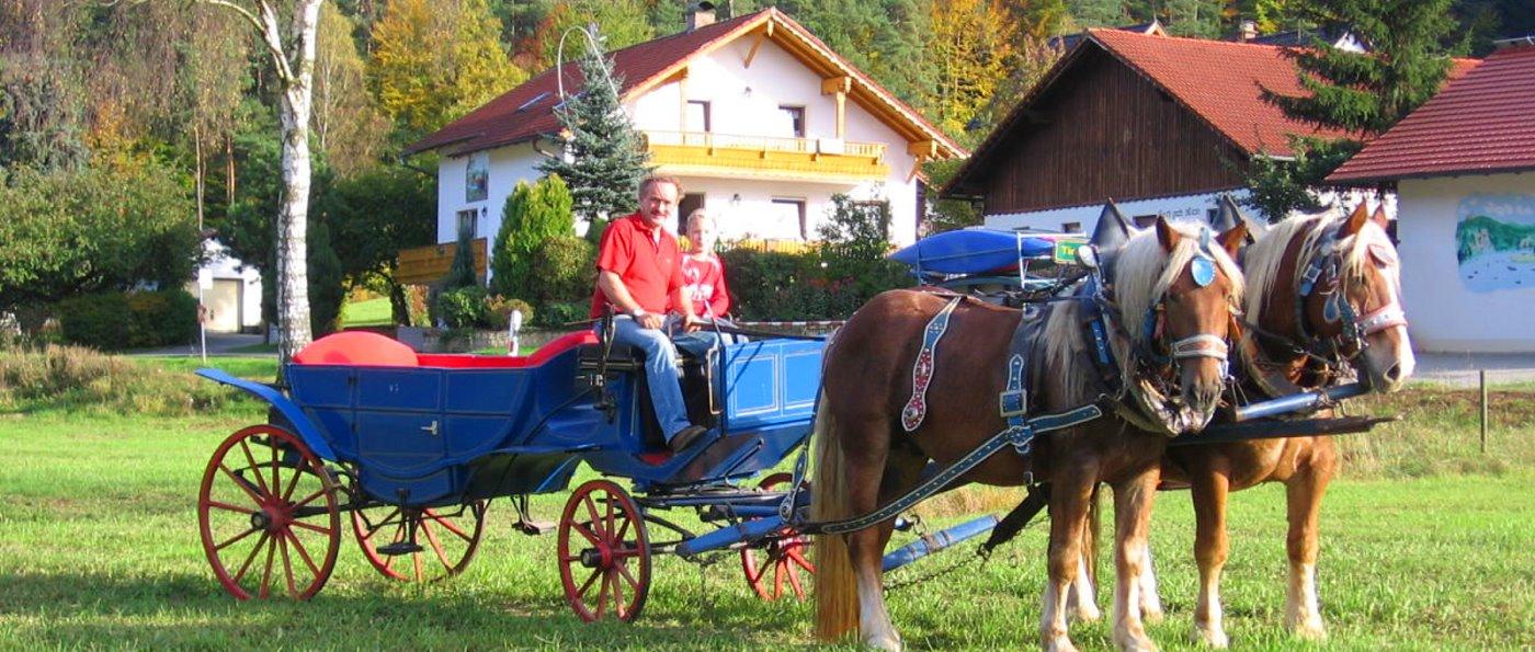 Ferienhof Zankl in Miltach – Kontakt