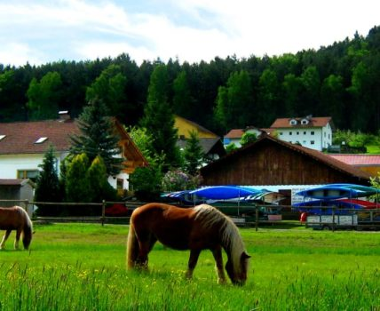 Pferdehof Zankl Fewo und Ferienhaus mit Kanuverleih